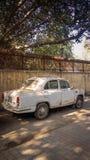 New Delhi, India - April 25, 2019 Een Oude Witte Ambassadeursauto wordt geparkeerd op een straat stock afbeeldingen
