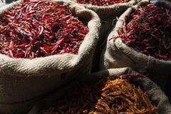 New Delhi. India New Delhi worker of the spice market stock photography