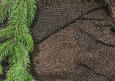 New design. Christmas design. On the sacking on the table green branch of fir or pine. Beads. Empty space for advertising and prin. Ting Stock Images