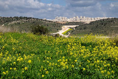 New districts of the city of Beit Shemesh. View from the blooming hills on new districts of the city of Beit Shemesh Stock Photos