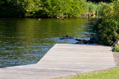 New dock near the water Stock Photography