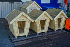 New dog booths made of wood on the street near the wall. Empty wooden booths for dogs from raw boards Stock Photography