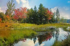 New England Autumn. Autumn reflections on a pond, with blue skies and clouds stock image