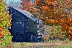 Grandfather`s Barn in the Fall
