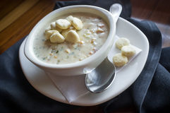 New England Chowder royalty free stock images