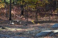 New England in de herfst Stock Afbeelding