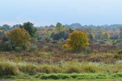 New England fält Royaltyfria Foton