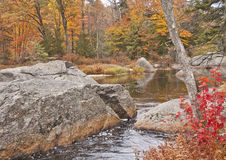 New England Fall Colors. Taken in New Hampshire along the Contoocook River in the fall Stock Images