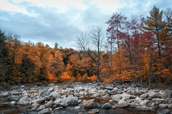 New England in fall Stock Images