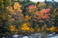 New England in fall. Fall foliage in New Hampshire, New England Stock Photo