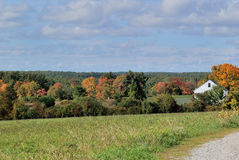 New England field on a bright sunny mid-October day. White farm house and trees turning colors in distance. Blue sky, puffy white clouds, green grass, orange Royalty Free Stock Photos