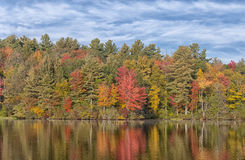 New England Foliage. Colorful Fall foliage reflecting off the waters of Burr Pond State Park in Torrington Connecticut Royalty Free Stock Photos