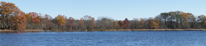 Panoramic view of autumn foliage at Kendrick Pond royalty free stock photography