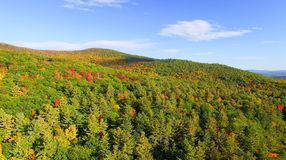 New England foliage in fall season. Aerial view Royalty Free Stock Photo