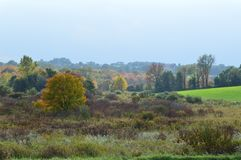 New England Landscape II. New England countryside in October. Fall colors with beautiful foreground florals and shrubs Stock Images