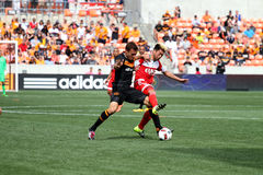 New England revolution V Houston Dynamo: Marschera 6, 2016 - #24 Lee Nguyen V #11 Andrew Wenger Arkivbilder