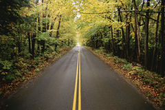 New England Road. Tree lined two lane highway, New England Royalty Free Stock Photos