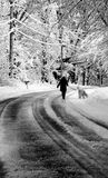 New England winter walk. Walking down a snowy  country road Royalty Free Stock Photo