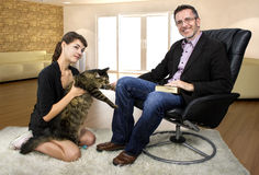 New Family Pet Cat Stock Photo