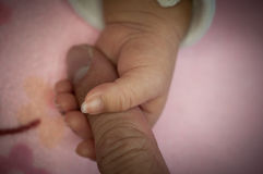 A new father holds his newborn infant baby`s hand for the first time. Parent holding newborns hand. Hand in hand. Parent Stock Images