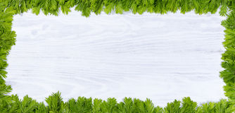 Free New Fir Tree Branch Tips On White Wood For The Annual Holidays Royalty Free Stock Photos - 72081878