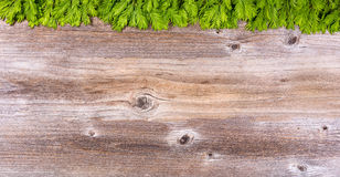 New fir tree branches on rustic wood board for holiday season Royalty Free Stock Image