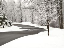 New fresh snow on branches of trees in winter scene. New fresh snow on branches of trees along road in winter scene in Bemidji Minnesota Stock Photo