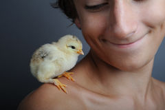 New friend. Golden newborn chick standing on boy shoulder, close up Royalty Free Stock Photo