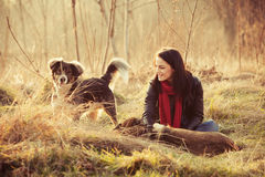 New friends. Girl with pariah dogs sit in yellow grass warm winter day retro colors Stock Photos