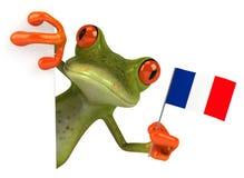New frog Stock Photo