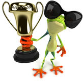 New frog Royalty Free Stock Photos