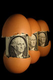 New generation. Three banknotes look from egg-shells. The background is black Royalty Free Stock Images