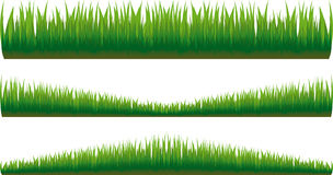 New grass Stock Images