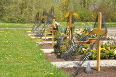 New graves with wooden crosses stock photo
