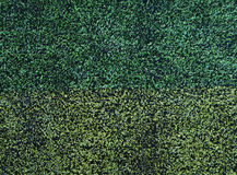 New green soccer field from top view Stock Image