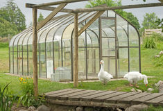A new greenhouse on a farm. Stock Image