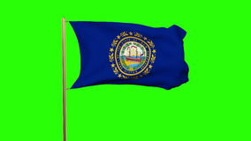 New hampshire flag waving in the wind. Green. Screen, alpha matte. Loops animation stock video