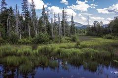 New Hampshire Landscape Stock Images
