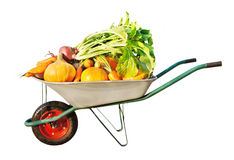 The new harvest. Many different vegetables lie in the garden cart. Isolated on white background Royalty Free Stock Photo