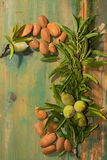 New harvest of almonds, ripe almonds and fresh green almonds on Stock Images