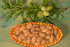 New harvest of almonds, ripe almonds and fresh green almonds on Royalty Free Stock Photo