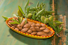 New harvest of almonds, ripe almonds and fresh green almonds on Royalty Free Stock Photos