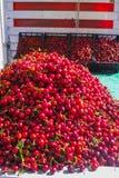 New harvest of fresh ripe red sweet cherry, street market in Ita Royalty Free Stock Photos