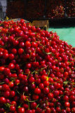 New harvest of fresh ripe red sweet cherry, street market in Ita Royalty Free Stock Images