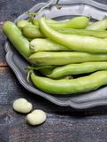 New harvest of healthy vegetables, green fresh raw big broad bea. Ns close up Stock Images