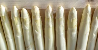 Free New Harvest Of White Asparagus, High Quality Raw Asparagus In Spring Season, Ready To Cook Royalty Free Stock Image - 156507056