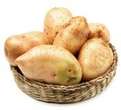 New Harvest Potato Stock Photos