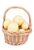 New Harvest Potato Stock Photo