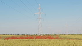 New high voltage power lines on poppy field in Crimea. stock video footage
