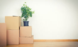 New home concept. Boxes in empty room Stock Image